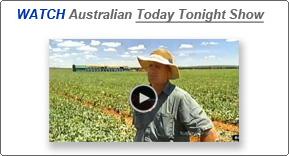 Australian Today Tonight Clip